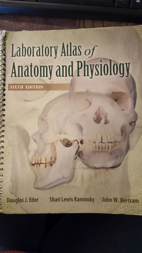 Anatomy & Physiology 7th Ed., w/ Atlas and Connect Subscription for ...