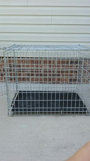 Large Dog Kennel For In Myrtle Beach Sc