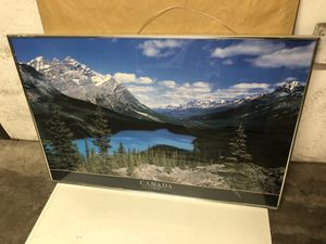 Beautiful park photo framed for Sale in Denver, CO