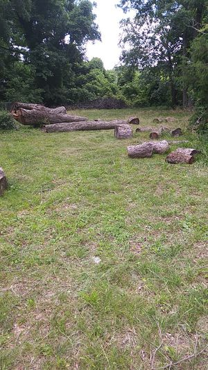 Pecan firewood free for Sale in Raleigh, NC