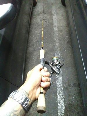 Ultra light carbon camp USA made & 10 bearing smooth casting reel for Sale in Walnut, CA