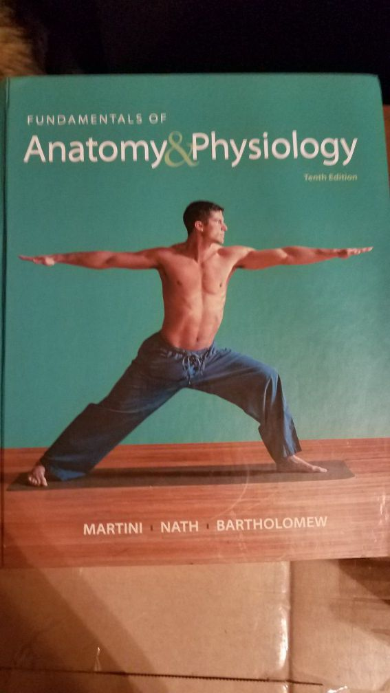 Anatomy and Physiology textbook for Sale in Camden, NJ - OfferUp