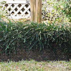 Homarden Cat Repellent Outdoor Scat Mat (6.5 ft) Thumbnail