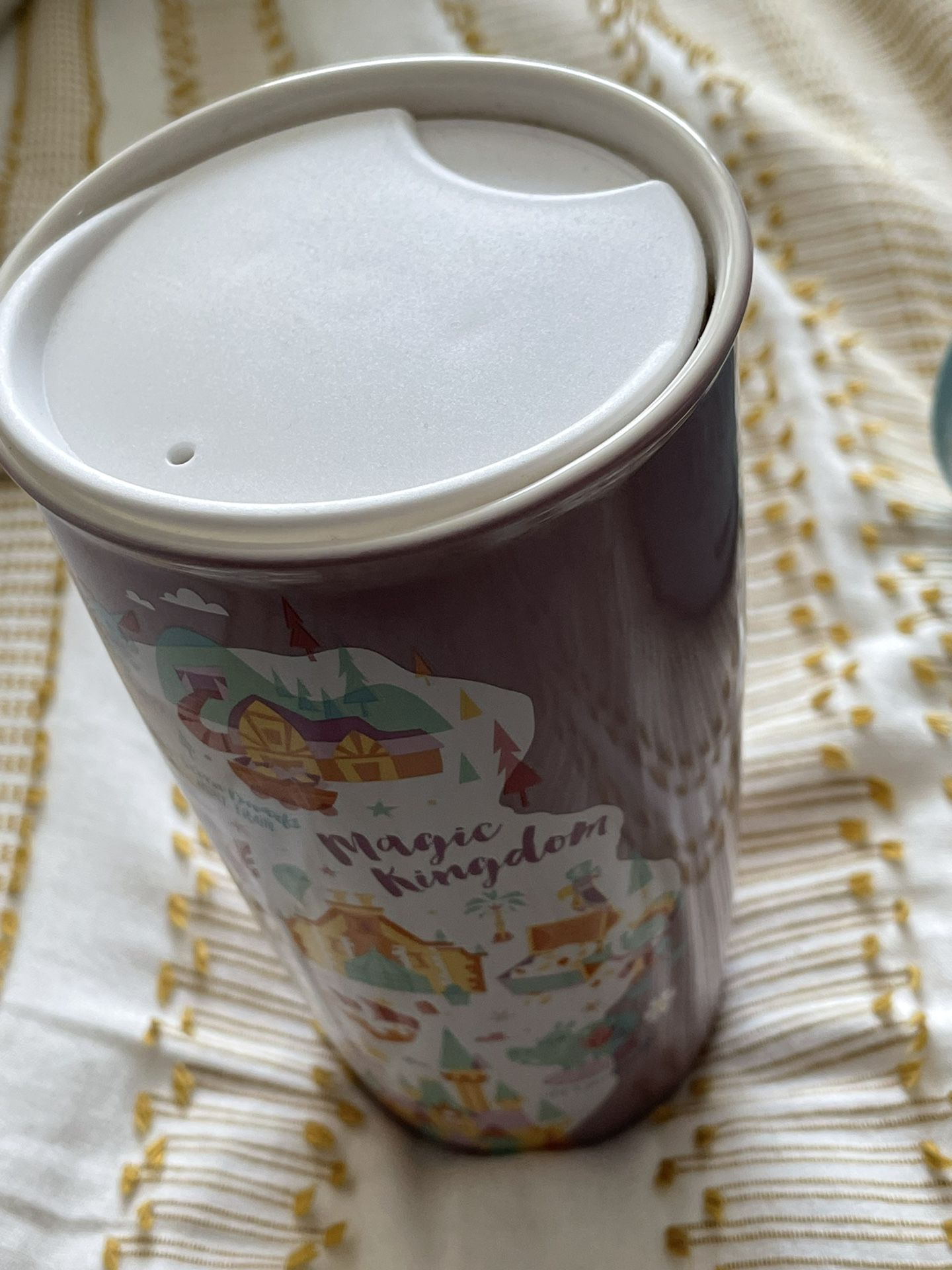 Disney Florida Starbucks Ceramic Mugs