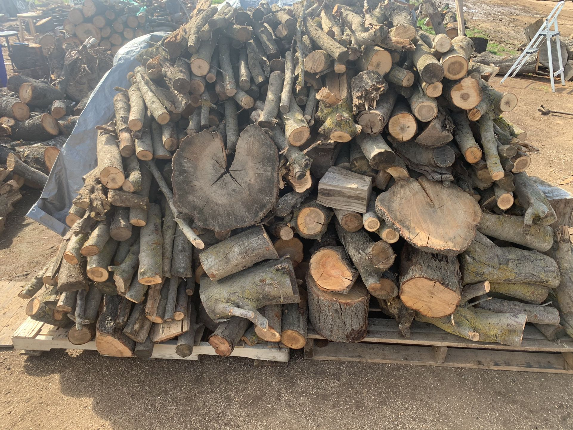 Dry Firewood!!!On The Go!!!
