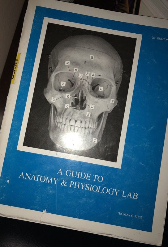 BIO 239 HUMAN ANATOMY BOOK for Sale in Santa Ana, CA - OfferUp
