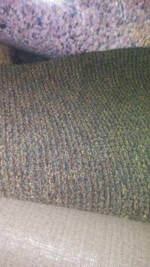Carpet. I have 4 rug for Sale in Philadelphia, PA