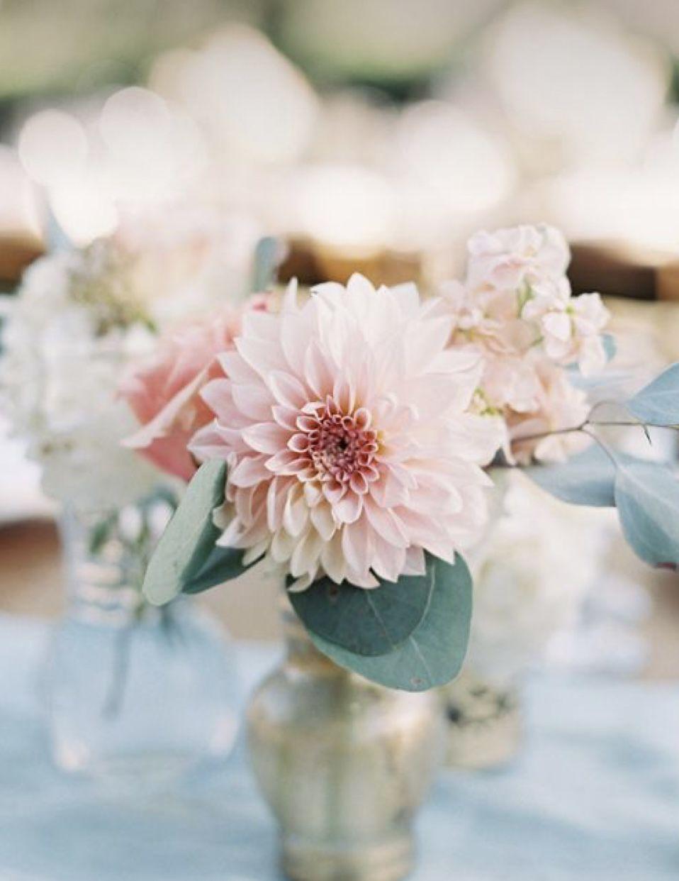 Wedding dahlias White, Blush And Pink Dahlias