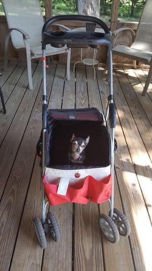 Dog Stroller for Sale in Owings, MD