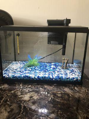 Aquarium for Sale in Manassas, VA