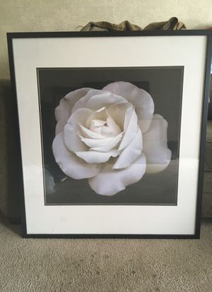 Rose Painting for Sale in Frederick, MD