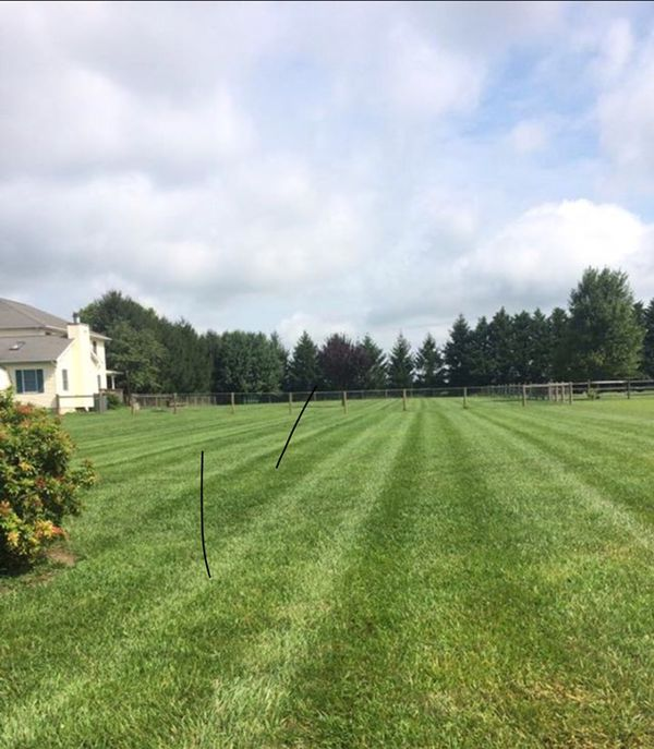 Lawn Service And Maintenance For Sale In West Palm Beach
