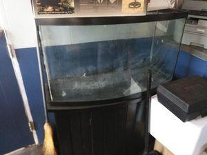 Aquarium for Sale in Seminole, FL