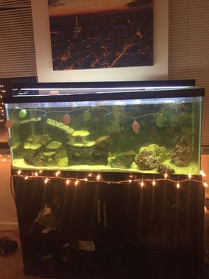 75 GALLON SALT WATER FISH TANK $200 for Sale in Washington, DC