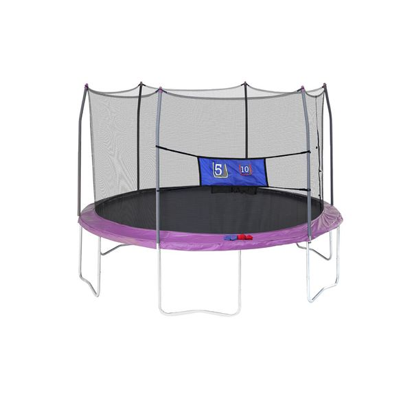 Skywalker Trampolines 12 Feet Round Trampoline And Enclosure With Spring Pad Purple For In Plano Tx Offerup