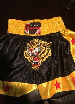 Muay Thai/Kickboxing shorts Thumbnail