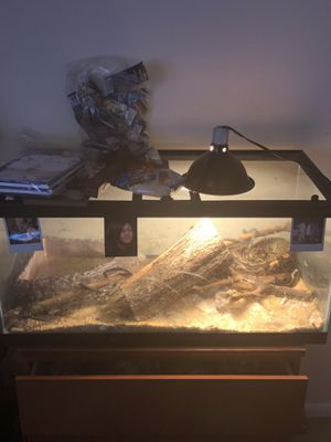 Snake tank and everything included for Sale in Fort Washington, MD