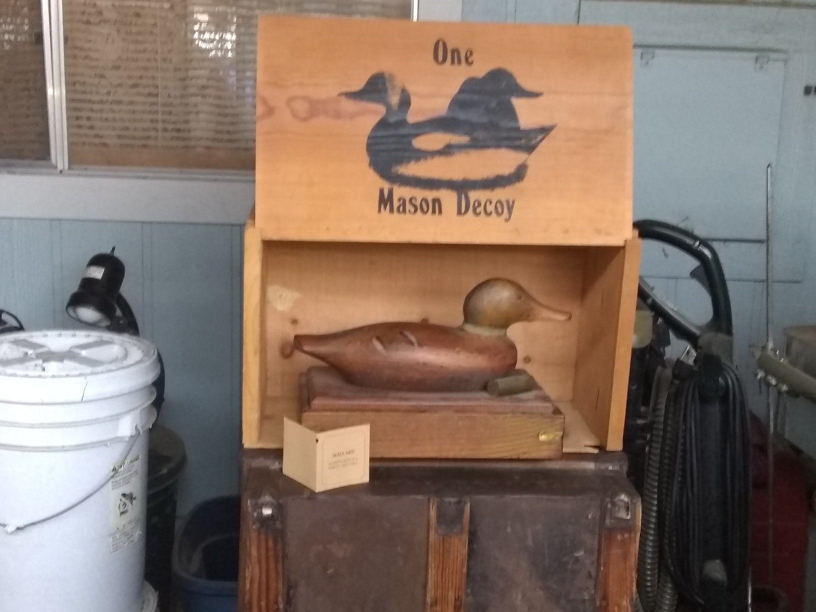 Mason decoy