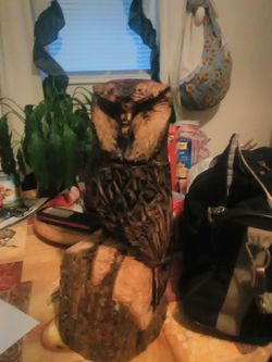 Chainsaw carving of owl Thumbnail