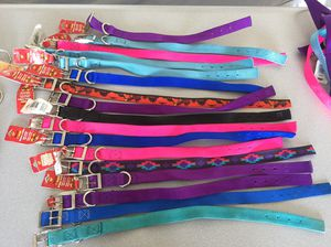 Brand new - dog collars for Sale in Orlando, FL
