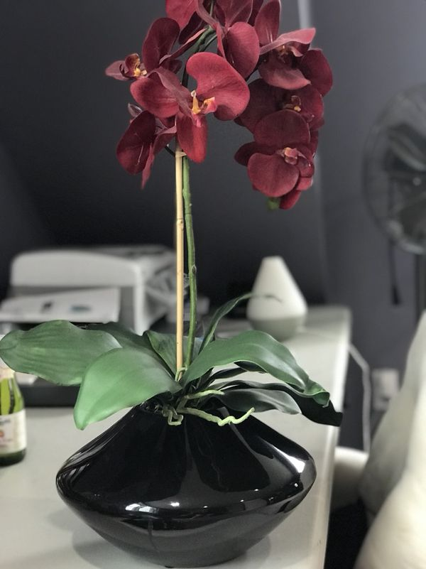 Fake Orchid Flower In Vase From Homegoods Household In State