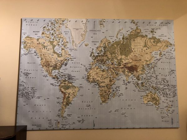 Ikea Canvas Hypsometric World Map for Sale in Kent, WA - OfferUp