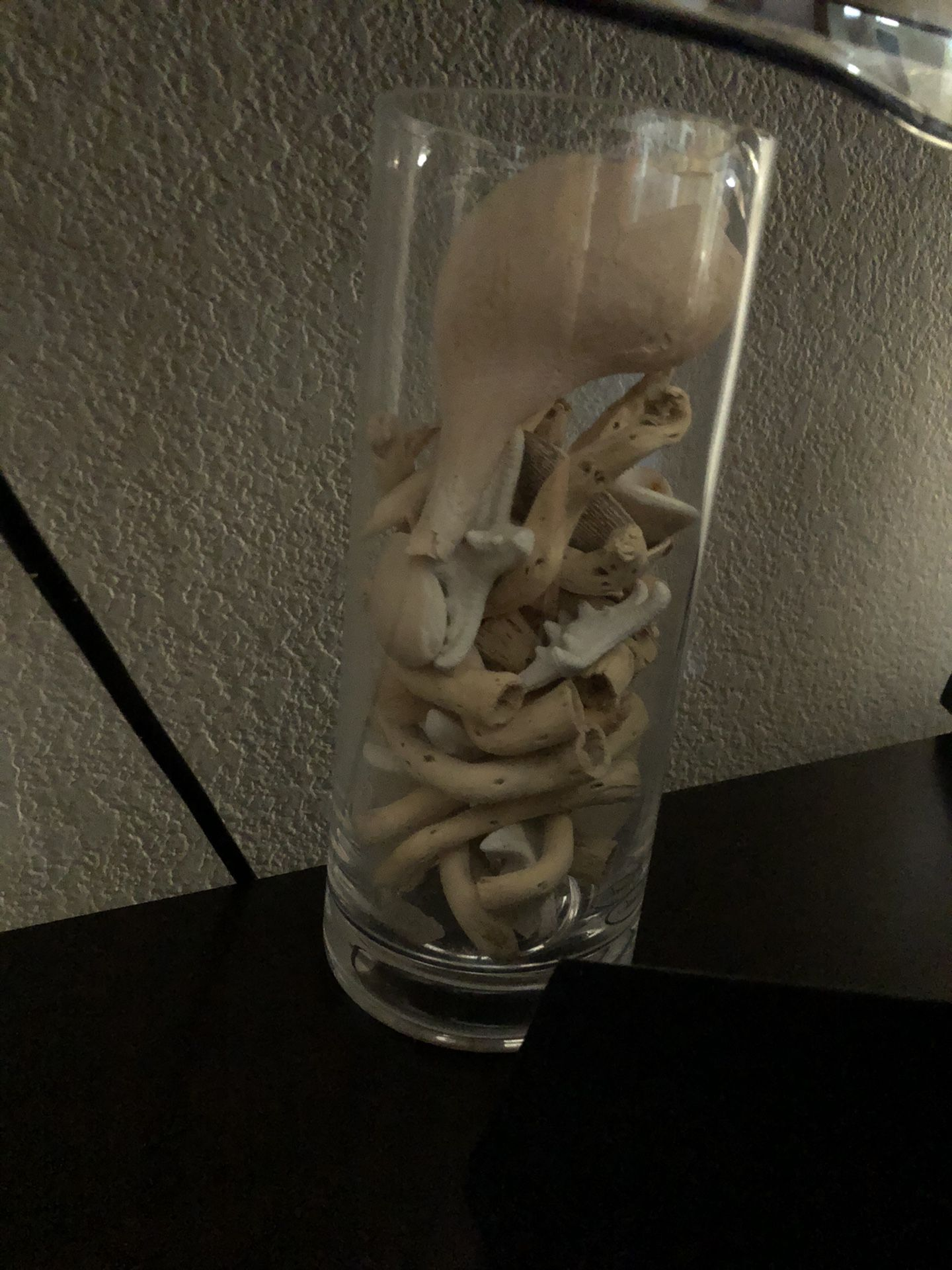 Pottery Barn Decorative Vase with Beach Wood Pair (2)