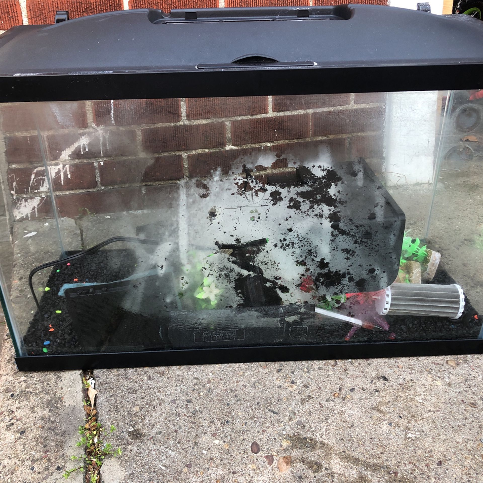 Fish Tank Glass  30 Inches W   19 Inches  Long  1 Feet Deep