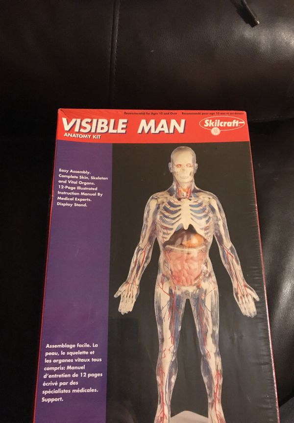 Skilcraft visible man anatomy kit for Sale in Chicago, IL - OfferUp