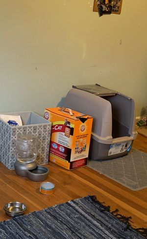 Free cat supplies!! (Cat included) for Sale in Wheaton-Glenmont, MD