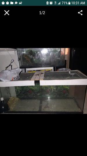 Photo 120 gal tank