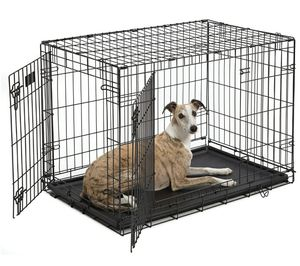 iCrate Double Door Fold & Carry Dog Crate, 36x23x25 for Sale in Capitol Heights, MD