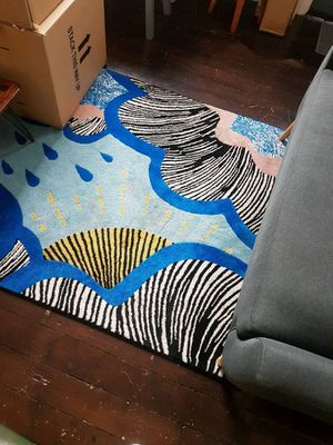 IKEA RUG 5x7 w pillow cases for Sale in Orlando, FL