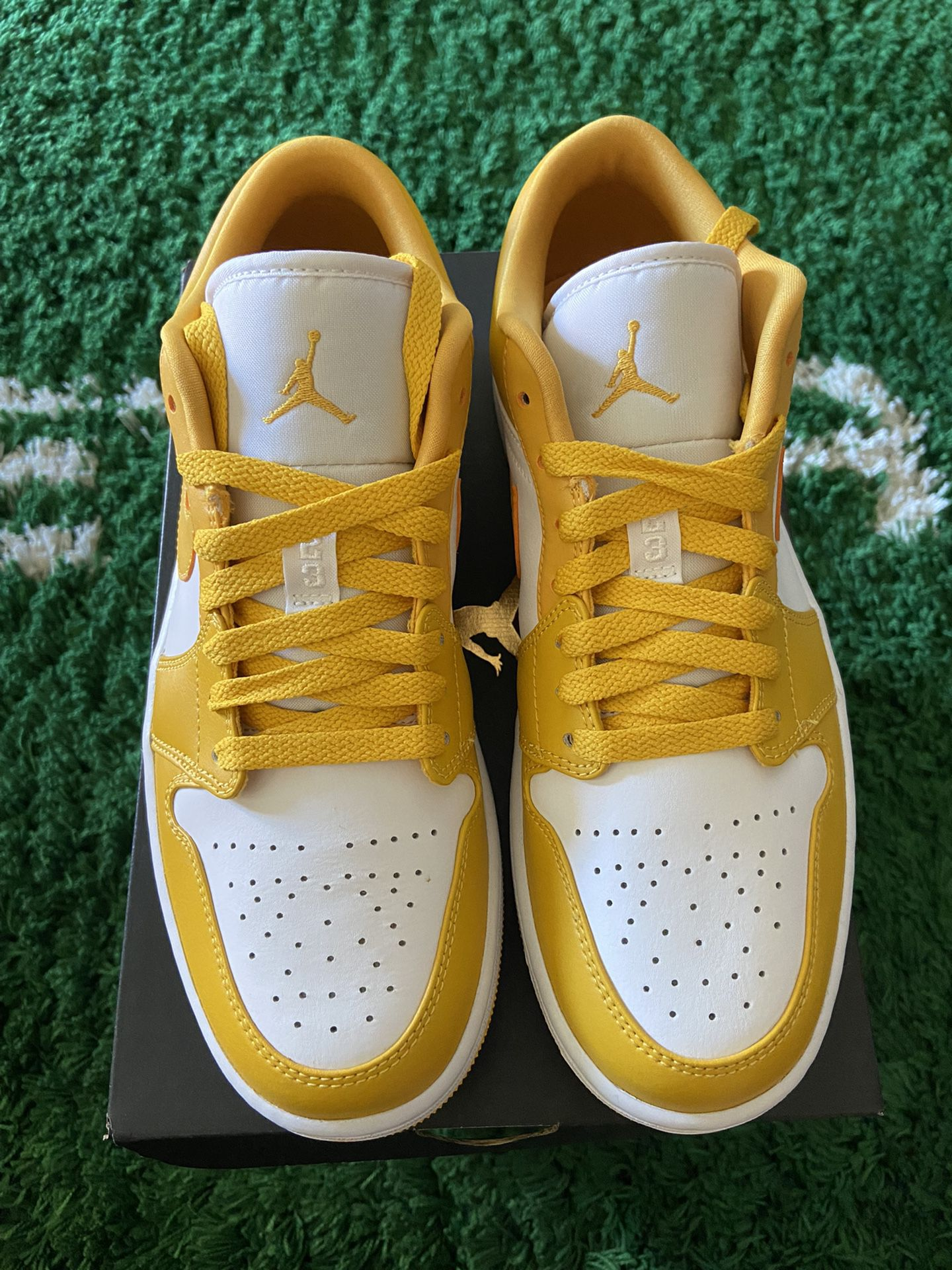 New DS Size 8.5 And 9.5 Jordan 1 Pollen Low