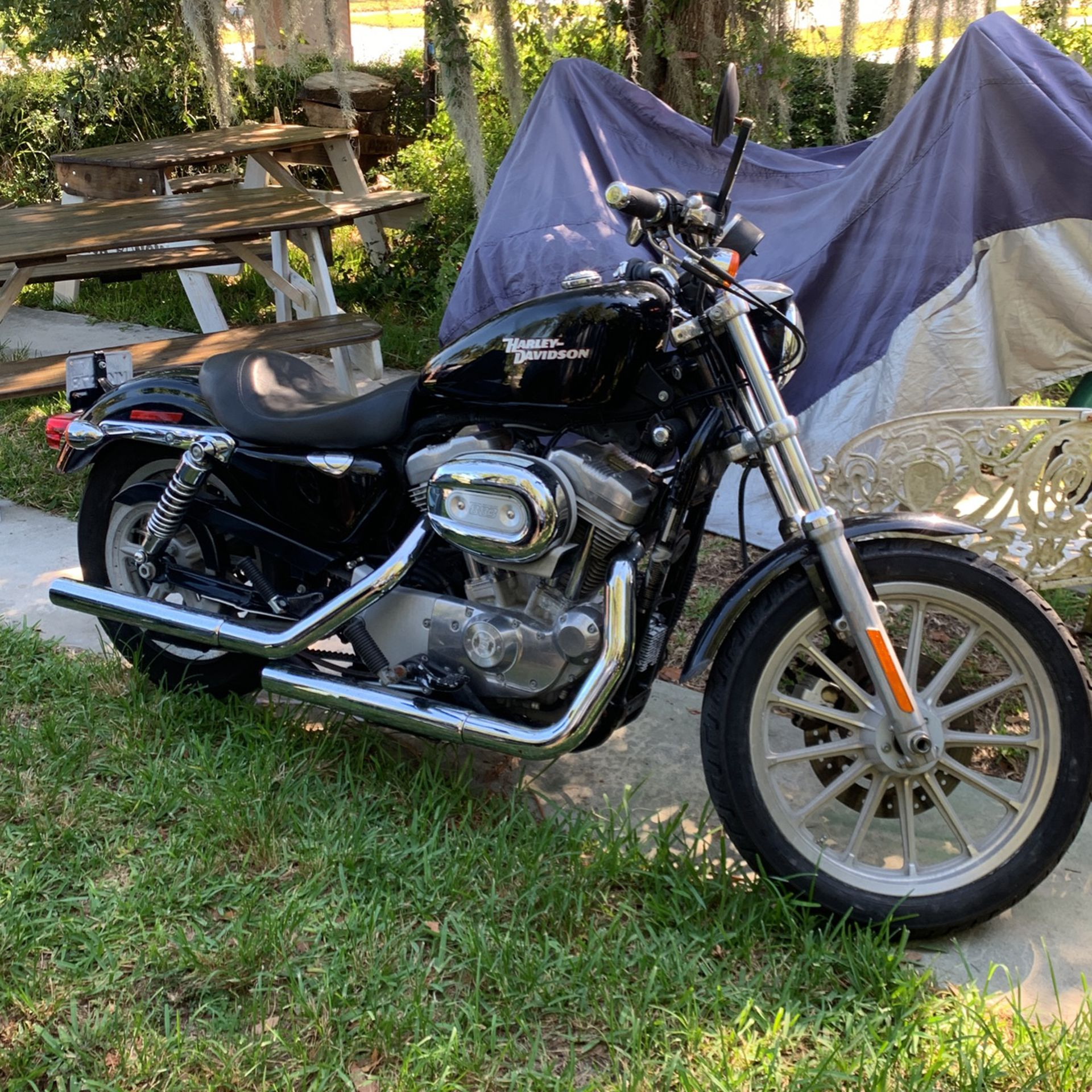 Photo 2008 Harley Davidson Sportster 883