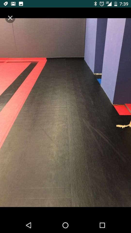 Dollumar MMA mats for Sale in Plano, TX - OfferUp