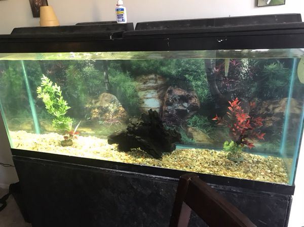 65 gallon tank an wooden Stand for Sale in Columbus, OH
