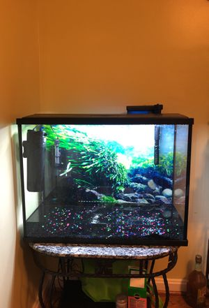 40 gallon fish tank for Sale in Adelphi, MD