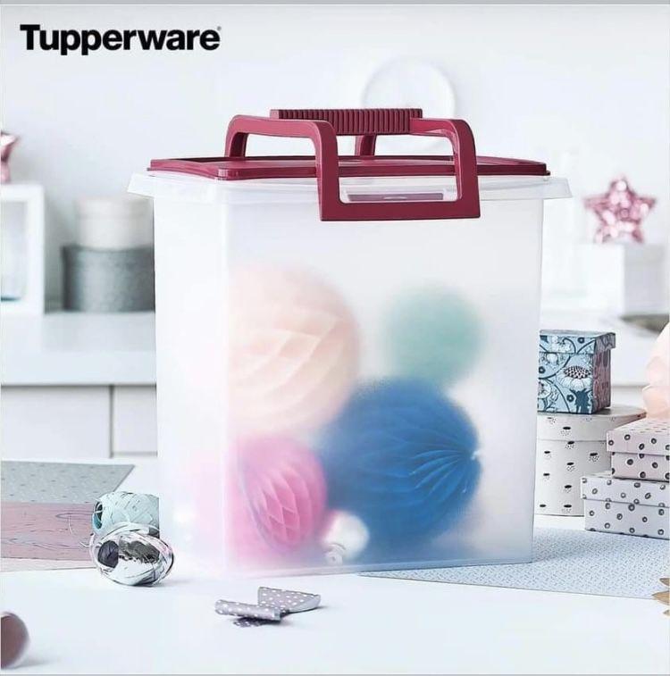 Tupperware varias especiales