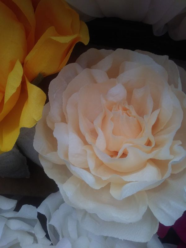 Giant Crepe Paper Flowers For Sale In Bakersfield Ca Offerup