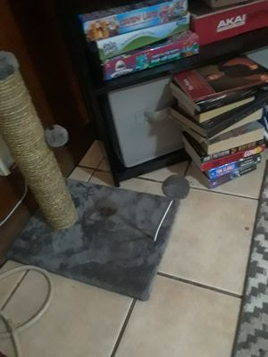 Cat scratcher/ toy for Sale in Chester, VA