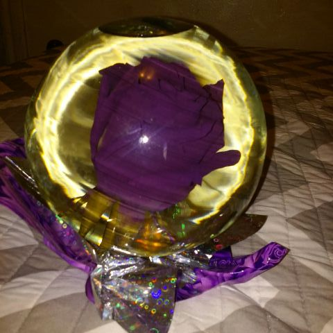 Real Rose in Water Globe for Sale in Los Angeles, CA - OfferUp