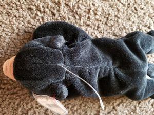 Blackie Ty beanie for Sale in Glendale, AZ