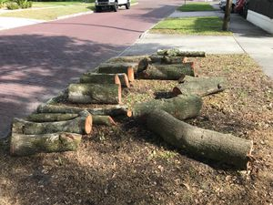 Free Oak Wood, firewood, curb alert for Sale in Orlando, FL
