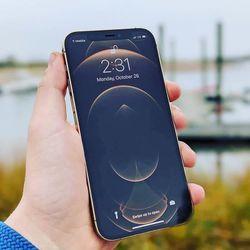 Apple Iphone 12 Promax Thumbnail