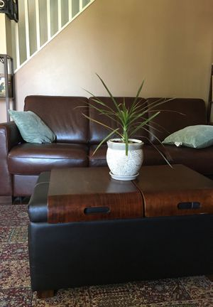Fine New And Used Sofa For Sale In Bethlehem Pa Offerup Home Interior And Landscaping Ologienasavecom