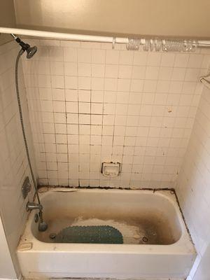 Tub and tile refinishing~reglaze for Sale in Falls Church, VA