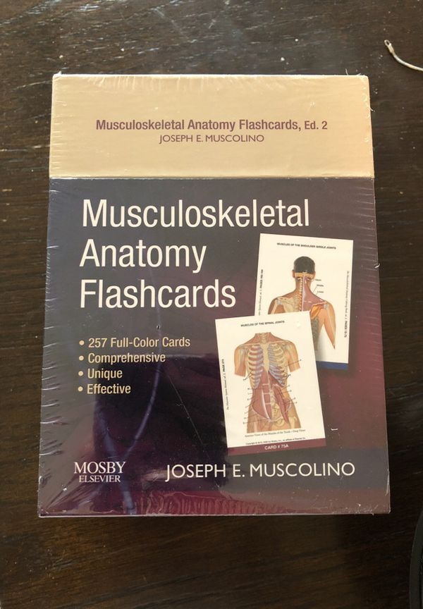 Musculoskeletal Anatomy Flashcards by Joseph Muscolino for Sale in ...