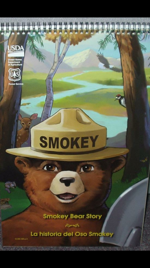 Smokey bear story stand up picture book for Sale in Denver, CO