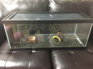 Critter cage for reptile for Sale in Olney, MD
